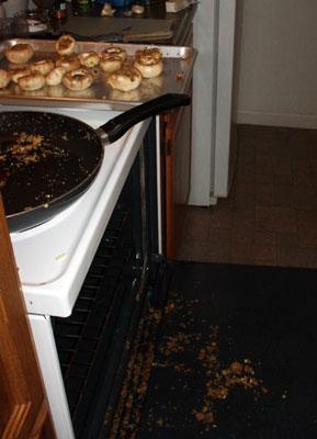 mushroom disaster
